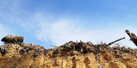 Land recycling as part of site management