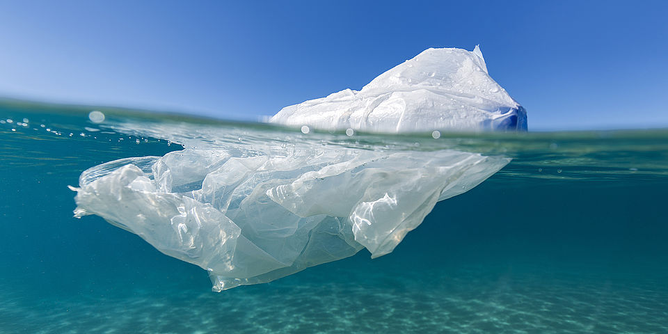plastic bag swimming in the sea